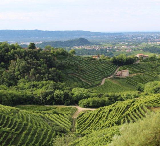 Veneto e bollicine